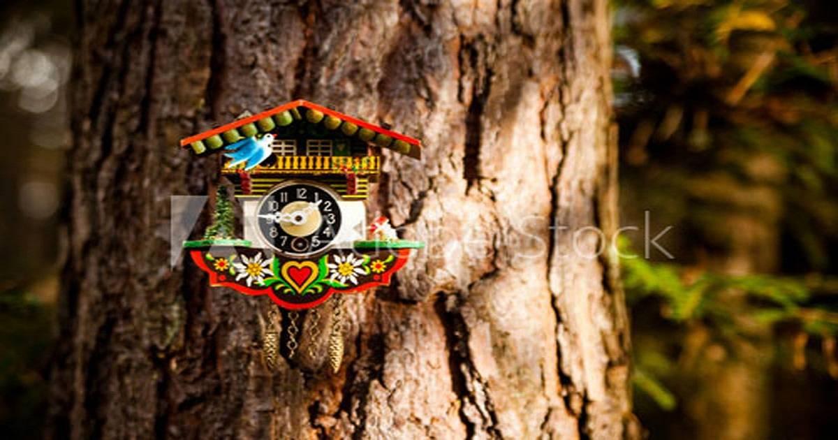 Nhận mua hộ và ship hộ Đồng Hồ Cuckoo - Black Forest của Đức trên Ebay, Amazon...